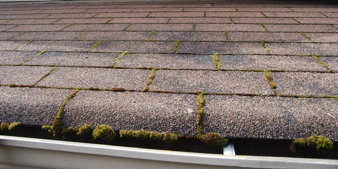 roof repair in Edmonds